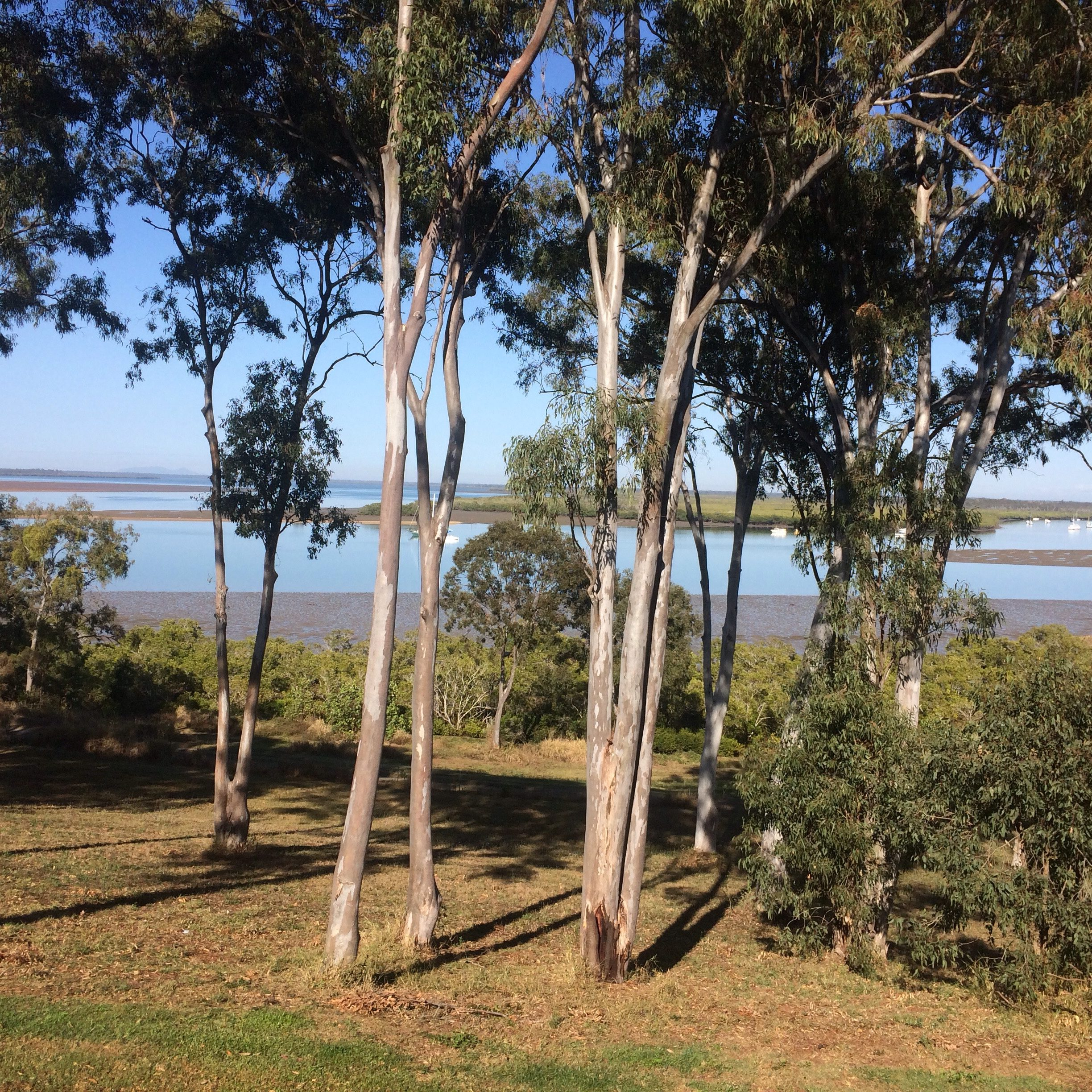View from VK's Cafe at River Heads Shops